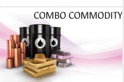 Understanding Commodity Oil Prices